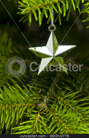 Star shape Christmas tree decoration stock photo, Star shape Christmas decoration in real tree by Ulrich Schade