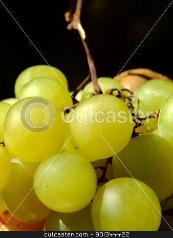 White grapes stock photo, Close-up of white grapes by Massimiliano Pieraccini