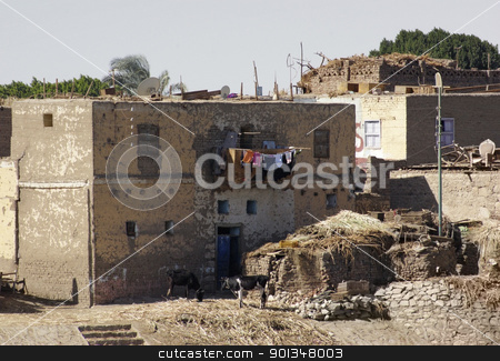 rural scenery in Egypt stock photo, rural scenery with low-grade houses in Egypt (Africa) at evening time by prill