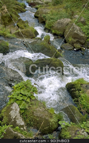 idyllic Triberg Waterfalls stock photo, scenery showing the Triberg Waterfalls in the Black Forest in Southern Germany at summer time by prill