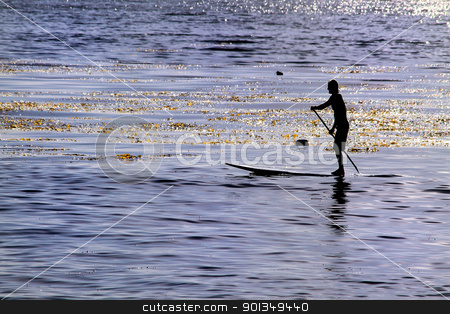 Paddle boarder surfer stock photo, Side view of surfer in golden blue ocean by Juliet N Newton