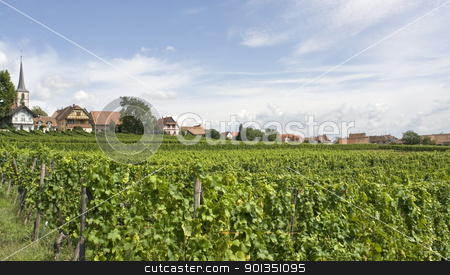 Mittelbergheim in Alsace stock photo, rural scenery including Mittelbergheim, a village of a region in France named Alsace by prill