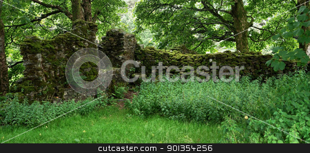 St. Fillans Priory ruins stock photo, ruins of the overgrown St. Fillans Priory Priory in Scotland by prill