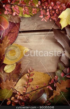 Autumn Border stock photo, Autumn Background - Color Autumn Leafs on Wooden Background by JAMDesign