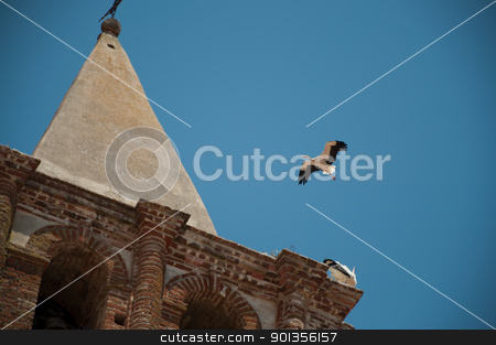 stork flying in extremadura, spain stock photo, stork flying in extremadura, spain in an old church in Alange by dirimir