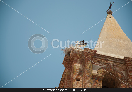 stork flying in extremadura, spain stock photo, stork flying in extremadura, spain in Alange by dirimir
