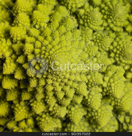 abstract romanesco cauliflower stock photo, abstract full frame background with a romanesco cauliflower closeup by prill