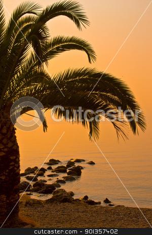 Beautiful beach sunset landscape  stock photo, Beautiful beach sunset landscape  by vician