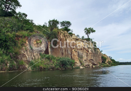 waterside Victoria Nile scenery in Uganda stock photo, waterside scenery showing the Victoria Nile with a big overgrown rock formation in Uganda (Africa) by prill