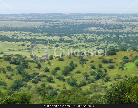 aerial view of the Kabwoya Wildlife Reserve stock photo, sunny aerial view of the Kabwoya Wildlife Reserve in Uganda (Africa) by prill