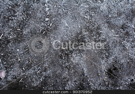 Frozen Dirt stock photo, Frosty ground that has some wood mulch in it on a cold morning in autumn. by Lee Serenethos