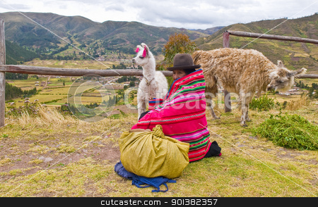 Peruvian woman stock photo, SACRED VALLEY,  PERU - MAY 27 : Unidentified Peruvian woman in traditional colorful clothes seat with here alpacas near a village in the sacred valley , Peru on May 27 2011 by Kobby Dagan