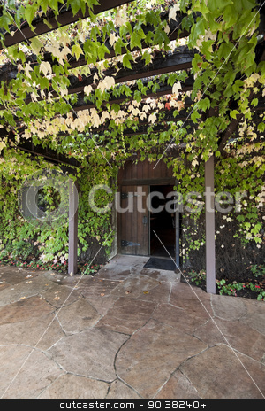 Vine Covered Trellis stock photo, A trellis covered with green vines leading to a doorway by Kevin Tietz