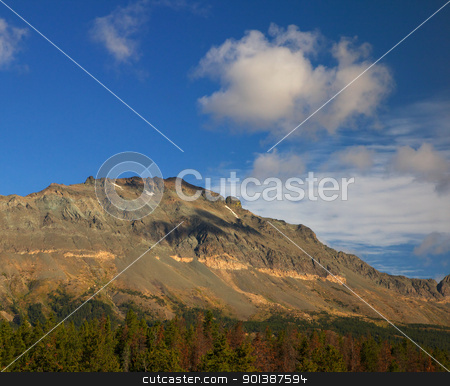 Bare Mountain stock photo, Treeless mountain ridge above a forest line with blue skys and white clouds by bobkeenan
