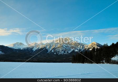 Illuminated winter landscape by the sun stock photo, Illuminated winter landscape by the sun with blue sky by Ulrich Schade