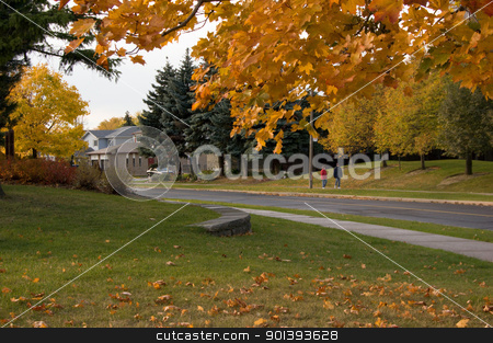 Autumn street stock photo, Fall's colorful tree around the street in Toronto by Pavel Cheiko