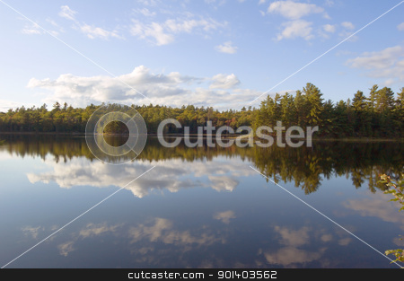 forest lake stock photo, forest lake in Killarney Park in the morning by Pavel Cheiko