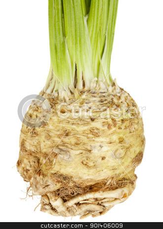 celery root (celeriac) stock photo, celery root (celeriac) isolated on white by Marek Uliasz