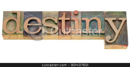 detiny word in letterpress type stock photo, destiny - isolated word in vintage wood letterpress printing blocks by Marek Uliasz