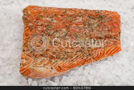 salmon on rock salt stock photo, a fillet of raw Norwegian salmon, seasoned with lemon juice and thyme, ready to bake on rock salt by Marek Uliasz