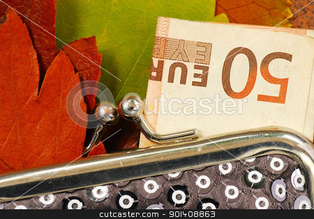 Silver Purse stock photo, details of silver purse over colorful autumn leaves by Julija Sapic