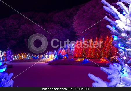 Christmas fantasy - chrismas trees in lights stock photo, Christmas fantasy - trees in lights by xbrchx