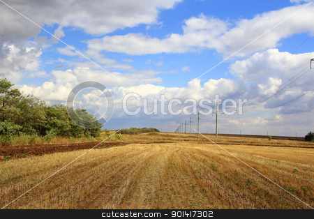 Summer landscape with field and sky stock photo, Summer landscape with field and blue sky by Julialine