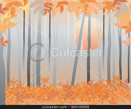 autumn woods stock vector clipart, an illustration of a deciduous wood in the fall with gray tree trunks and colorful leaves at sunset by Mike Smith