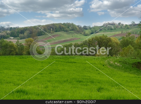 Hills stock photo, Green hills by vtorous