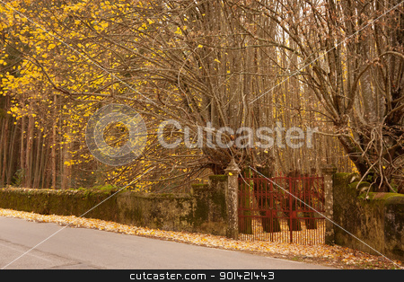 Gate to Autumn Forest stock photo, Old rusty gate and wall for an autumn forest  by Paulo M.F. Pires