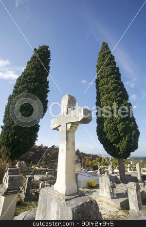 cross stock photo, tombstone crosses on blue mediterranean sky with cypresses by Paul Prescott