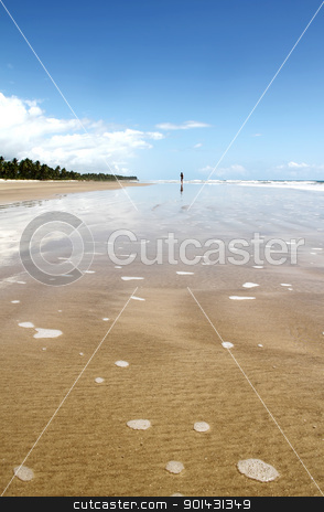Beach of Bahia stock photo, At the beach of Bahia, Brazil, South america. by Michael Osterrieder