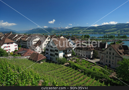 Rapperswil, Switzerland stock photo, Vineyard in Rapperswil, Switzerland with a view of the Alps and the lake Zurich in the distance. by © Ron Sumners