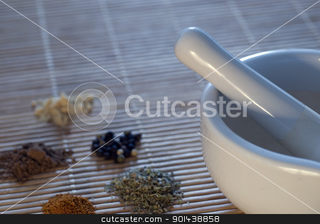 spice grinder stock photo, a spice grinder and some piles of spices by Stephen Gibson