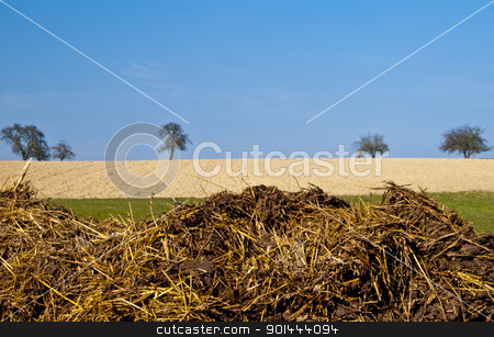 dung hill stock photo, dung hill with a blue sky by Hans-Joachim Schneider