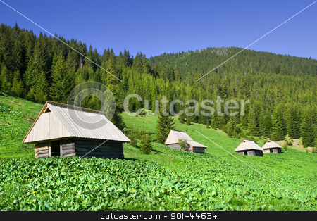 Tatra Mountains stock photo, Tranquil scenery in the Tatra Mountains in Poland, simple wooden huts on the meadow by Rognar