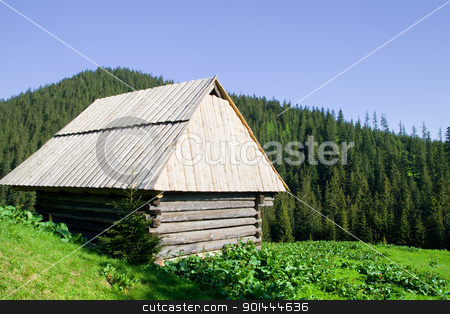Wooden Hut in the Tatra Mountains stock photo, Basic wooden hut in the Tatra Mountains, Poland by Rognar