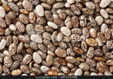 chia seeds at 2x life-size magnification stock photo, background of organic chia seeds rich in omega-3 fatty acids, two times life-size magnification by Marek Uliasz