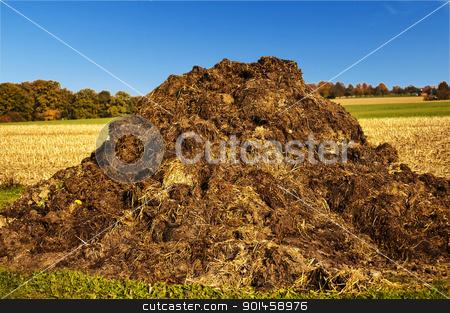 dung heap stock photo, dung hill with a blue sky by Hans-Joachim Schneider