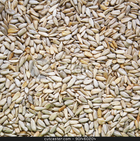 Sunflowers seeds as background stock photo, Sunflowers seeds can use as background by Morozova Oxana