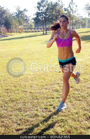 Beautiful Brunette Jogging Outdoors (3) stock photo, A lovely young athlete with remarkable abdominal musculature jogging outdoors.  Generous copyspace. by Carl Stewart