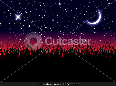 Space landscape grass stock vector clipart, Midnight landscape from field with stella space night sky by Michael Travers