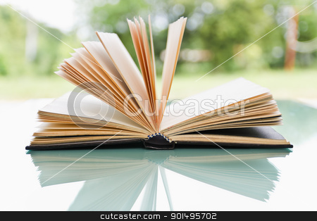 Open book  stock photo, Open book over a light nature background by stoonn