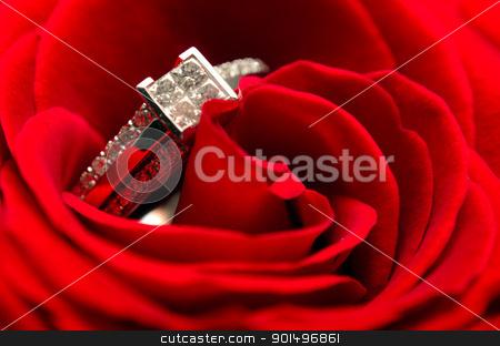 Diamond Engagement Ring stock photo, Macro view of a diamond engagement ring in a red rose by Richard Nelson