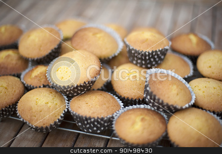 Party Cakes stock photo, a cooling rack full of fresh baked mini sponge cakes by Stephen Gibson