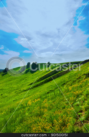 summer landscape stock photo, summer landscape of green valley and blue sky by olinchuk