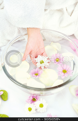 Spa composition  stock photo, Spa composition with one woman's hand by iMarin