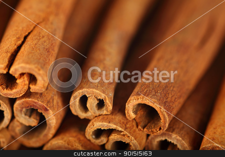 Cinnamon sticks stock photo, Macro photo of the ends of cinnamon sticks.  Very shallow depth of field with the focus on the middle stick. by © Ron Sumners