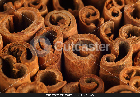 Cinnamon background stock photo, Macro photo of the ends of cinnamon sticks.  Very shallow depth of field with the focus across the middle. by © Ron Sumners