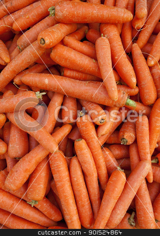 Lots of carrots close up. stock photo, Lots of carrots close up. by Stephen Rees